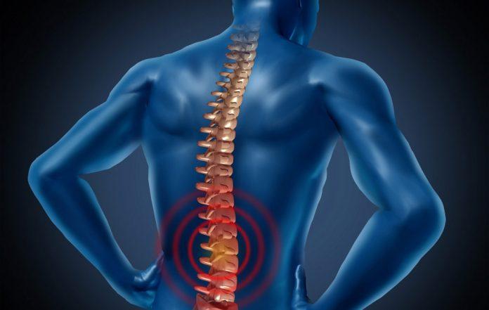 discopatia-vertebrale-quali-sono-le-topologie-le-cause-i-sintomi-e-i-rimedi