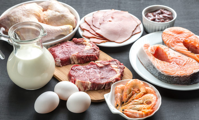dieta plank come funziona quanti chili si perdono e menu di esempio