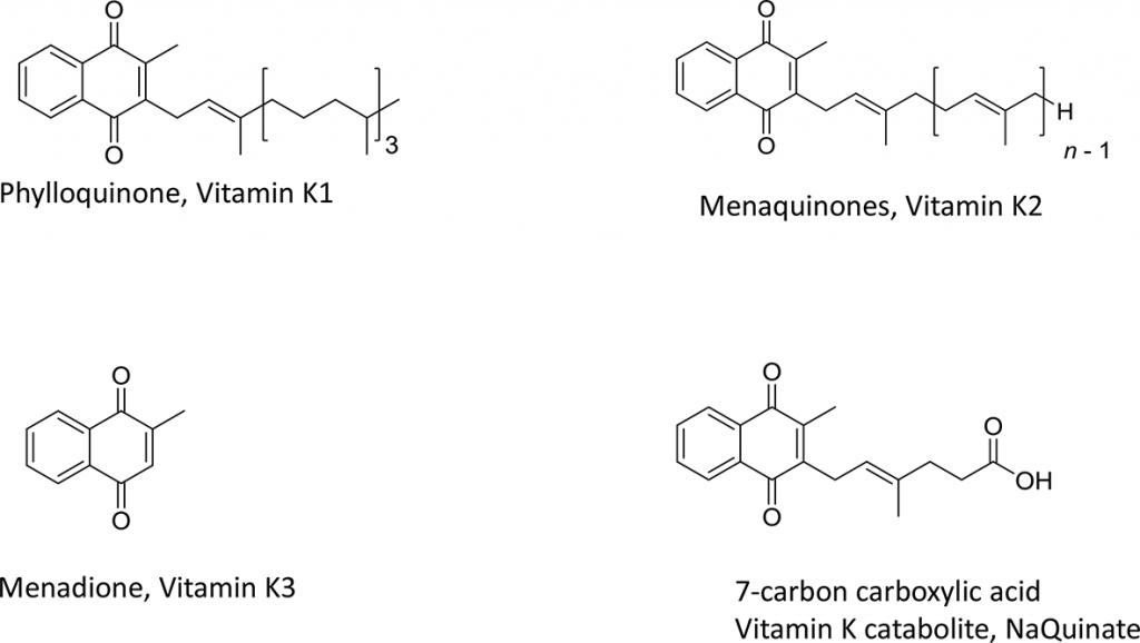 struttura vitamina k