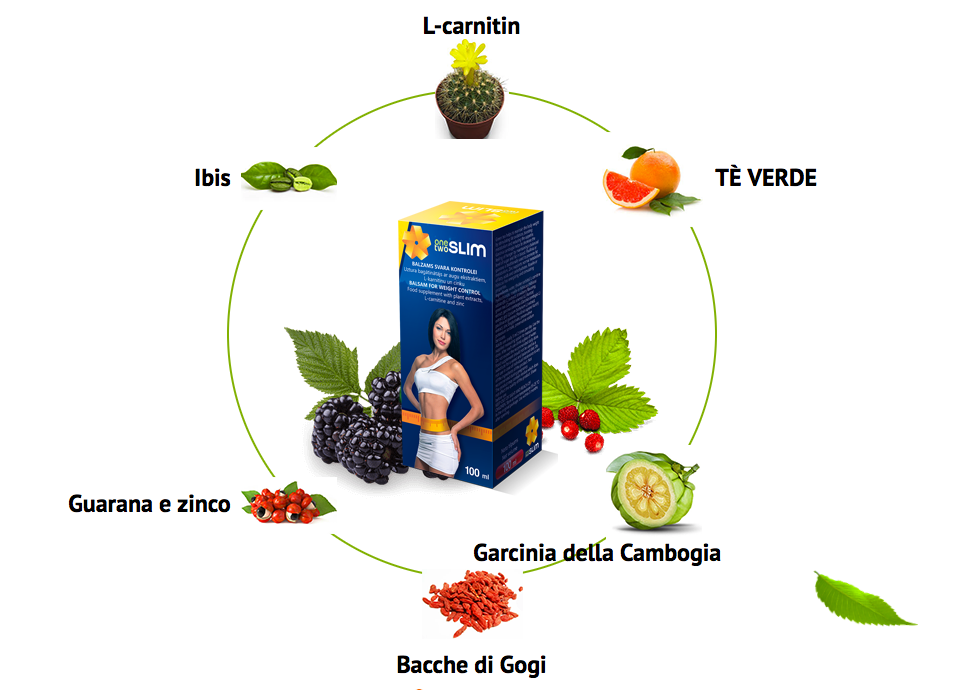 ingredienti onetwoslim
