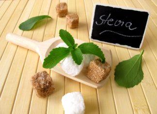 stevia che cose proprieta benefici e controindicazioni