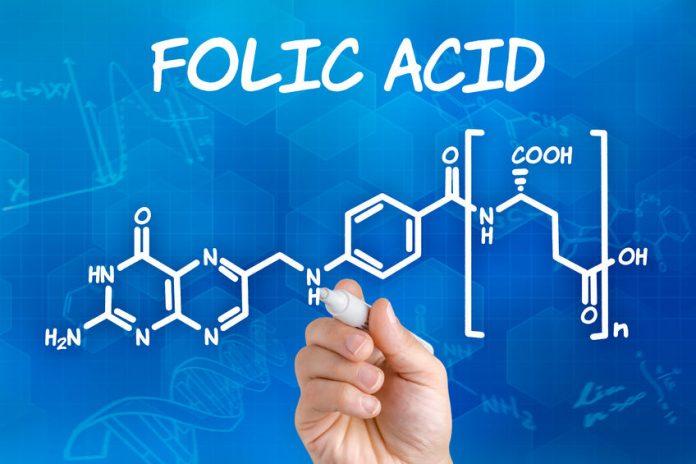 Vitamina B9 (acido folico)