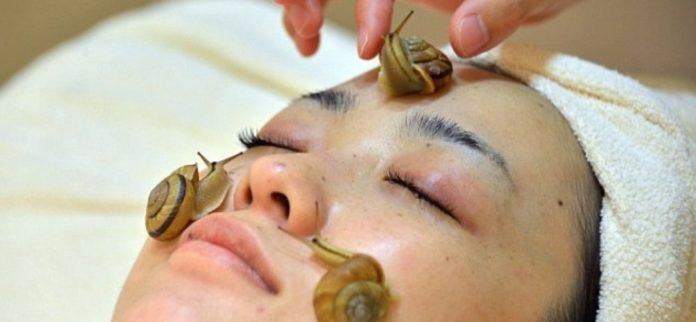 Bava di lumaca: che cos'è e proprietà benefiche per la pelle