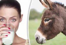 Latte d'Asina: proprietà, valori nutrizionali e utilizzo nei cosmetici e dove
