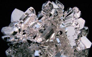 Magnesio: proprietà, benefici e in quali alimenti trovarlo