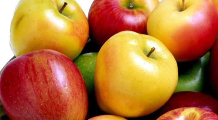 Mela: proprietà, calorie e controindicazioni