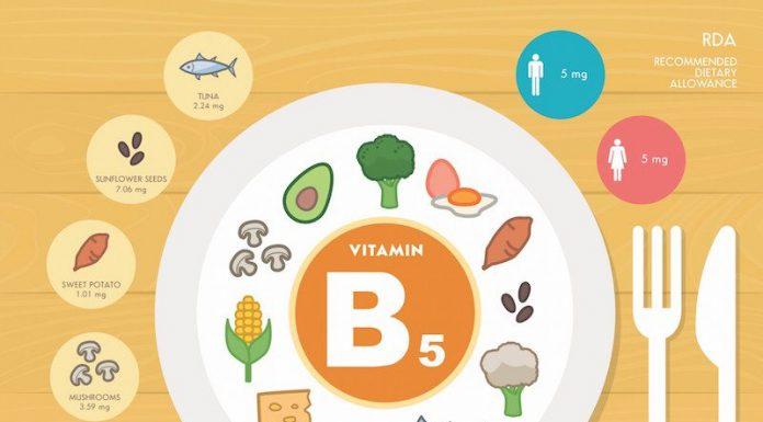 Vitamina B5: a cosa serve, proprietà, controindicazioni e dove trovarla negli alimenti