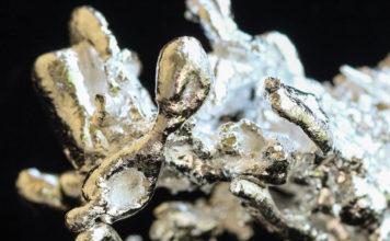 Argentum Metallicum: che cos'è, tipo costituzionale, utilizzi clinici e omeopatici