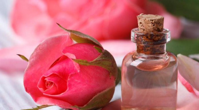 Acqua di rose: che cos'è, utilizzi e come prepararla in casa