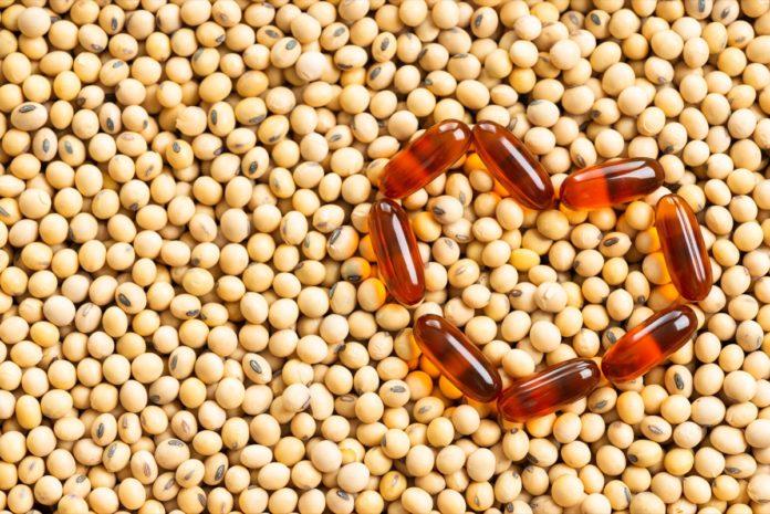 Lecitina e lecitina di soia: che cos'è, come si ottiene, proprietà ed effetti benefici