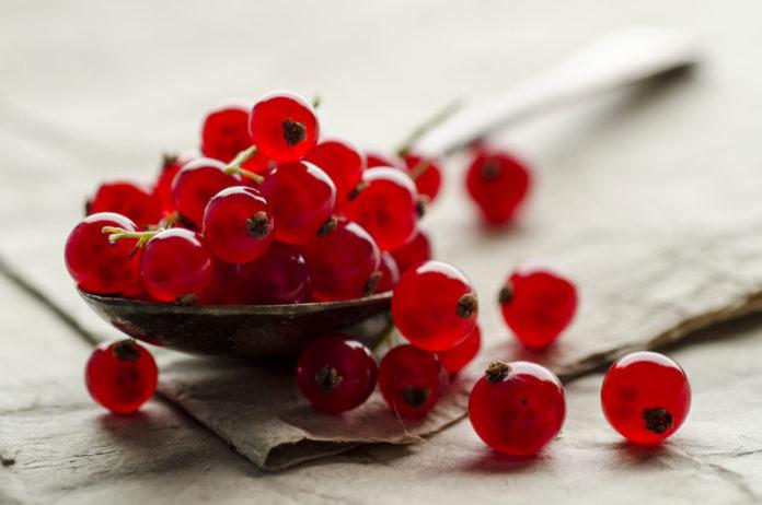 Ribes Rosso: proprietà, benefici, valori nutrizionali e utilizzi in cucina