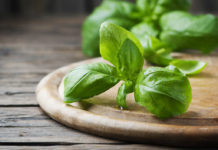 Basilico: che cos'è, proprietà, benefici, valori nutrizionali e utilizzi in cucina