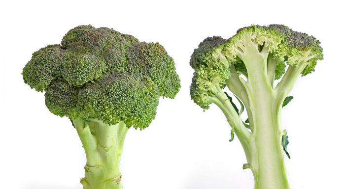 Broccoli: cosa sono, proprietà, benefici, utilizzi e controindicazioni