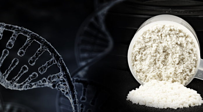 Citrullina: che cos'è, dove si trova e utilizzi