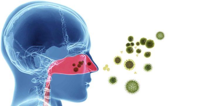 Rinite Allergica: che cos'è, sintomi, cause, diagnosi e possibili rimedi naturali
