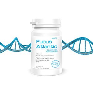 fucus-atlantic-capsule-