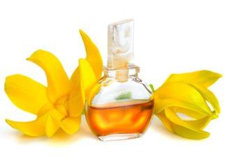 Olio essenziale di Ylang Ylang: che cos'è, proprietà, utilizzi e controindicazioni