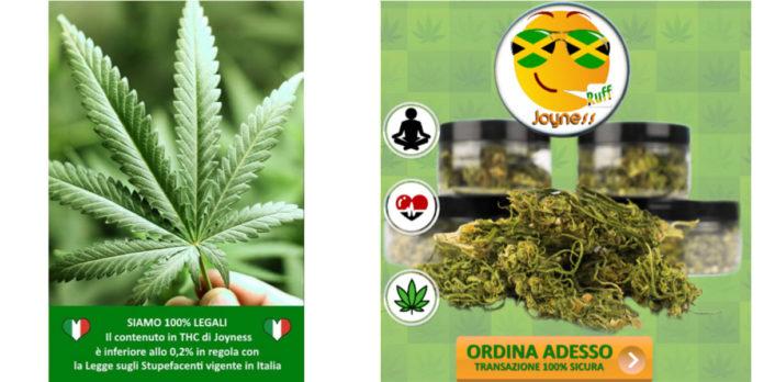 Joyness Ruff Cannabis: Canapa Light Sativa Legale Italiana, funziona davvero? Recensioni, Opinioni e dove comprarlo