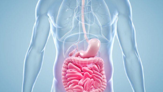 Morbo di Crohn: che cos'è, sintomi, cause e possibili cure