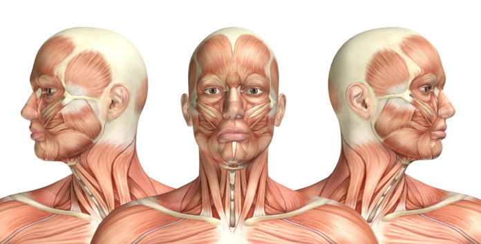 Sindrome Arnold Chiari: che cos'è, sintomi, diagnosi, cause e possibili cure