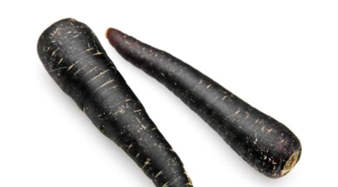 Carote nere: proprietà, benefici, utilizzi e controindicazioni