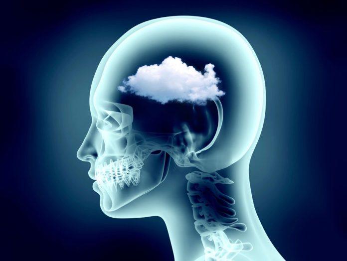 Demenza Vascolare: che cos'è, sintomi, cause, diagnosi e possibili cure