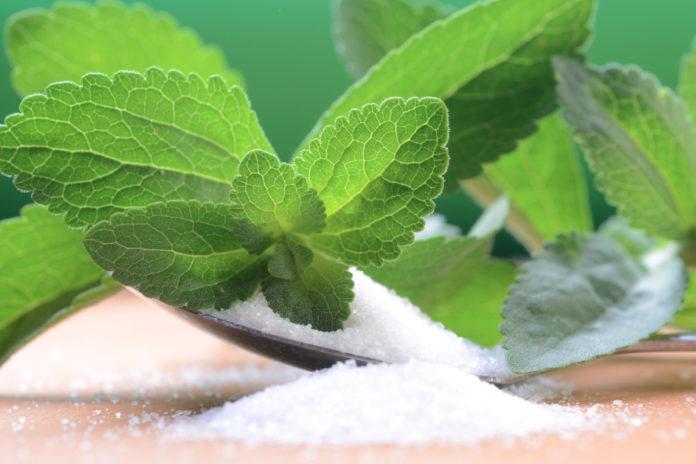 Stevia: che cos'è, proprietà, utilizzi e controindicazioni