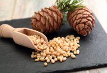 Pinoli: proprietà, benefici, valori nutrizionali e utilizzi in cucina