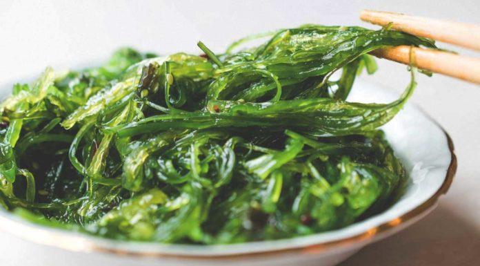 Alga wakame: che cos'è, proprietà, utilizzi e controindicazioni