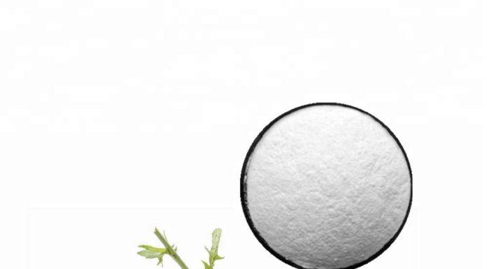 Inulina: che cos'è, proprietà, a cosa serve e controindicazioni