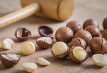 Noci di Macadamia: che cos'è, proprietà, benefici, valori nutrizionali e controindicazioni