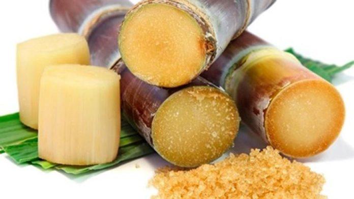 Zucchero Integrale di Canna: che cos'è, proprietà, benefici, utilizzi e controindicazioni