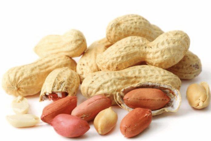 Arachidi: proprietà, benefici, valori nutrizionali e controindicazioni