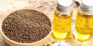 Olio di Perilla: che cos'è, a cosa serve, proprietà e controindicazioni