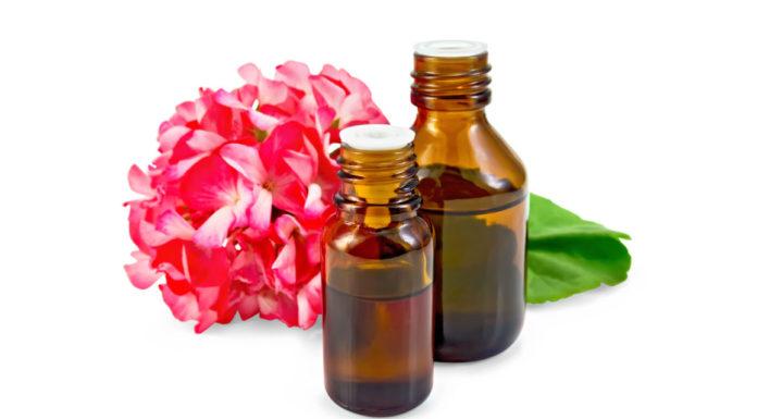 Olio essenziale di Geranio: proprietà, utilizzi e controindicazioni