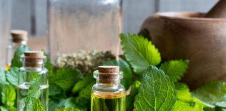 Olio essenziale di Melissa: proprietà, utilizzi e controindicazioni