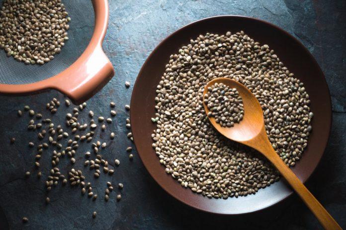 Semi di Canapa: cosa sono, classificazioni e valori nutrizionali