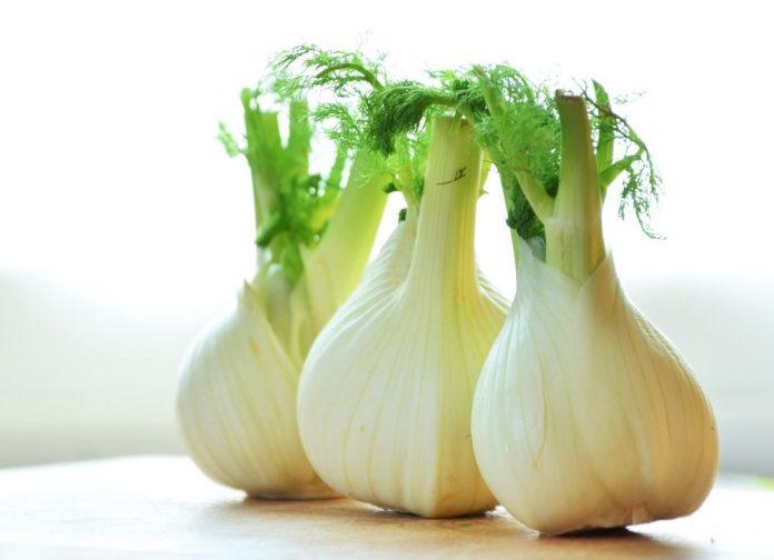 Dieta del Finocchio: che cos'è, come funziona, cosa mangiare e controindicazioni