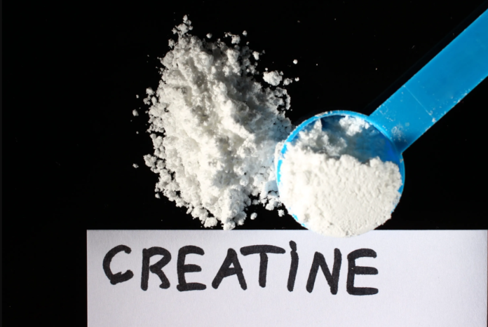 Creatina: che cos'è, a cosa serve, dosaggi, proprietà e controindicazioni