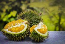 Durio zibethinus (Durian): che cos'è, valori nutrizionali, proprietà, utilizzi e controindicazioni
