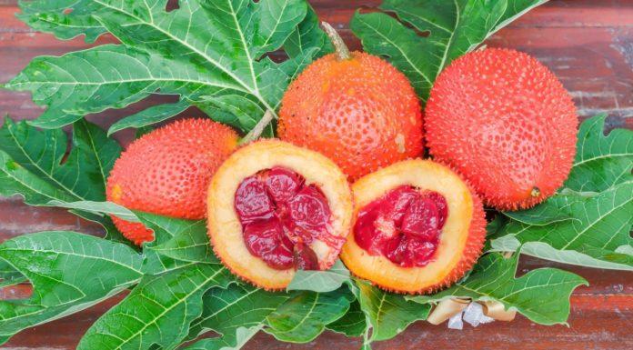 Gac Fruit: che cos'è, proprietà, benefici, valori nutrizionali ed utilizzi