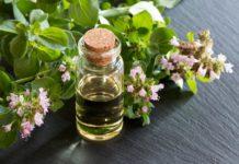 Olio essenziale di Origano: che cos'è, proprietà, utilizzi e controindicazioni