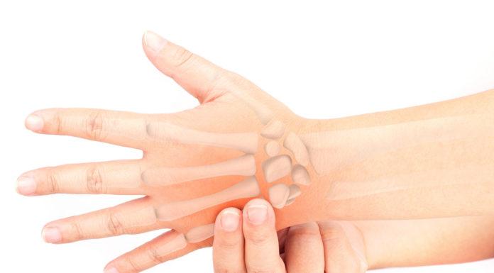 Falangi: cosa sono, anatomia e funzioni