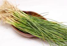 Erba Cipollina: che cos'è, proprietà, valori nutrizionali e utilizzi