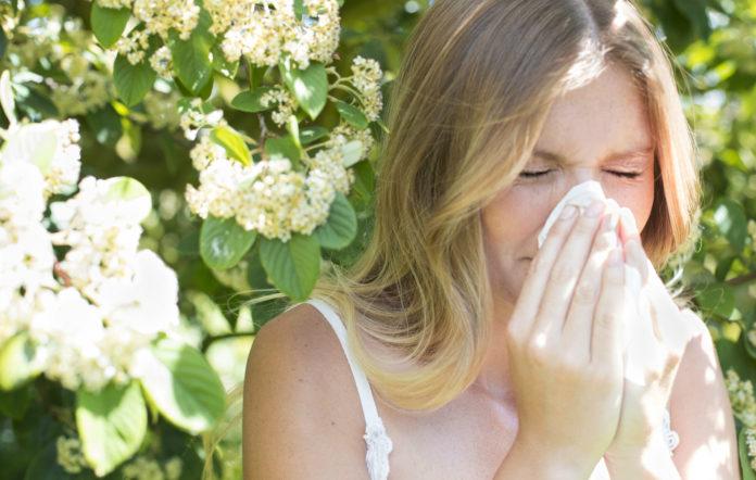 Febbre da Fieno: che cos'è, cause, sintomi, diagnosi e possibili cure