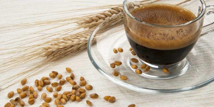 Caffè d'Orzo: che cos'è, proprietà, valori nutrizionali, utilizzi e controindicazioni
