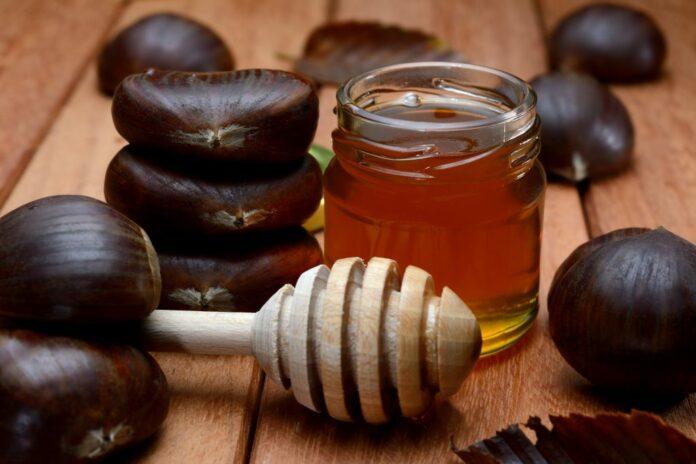 Miele di Castagno: che cos'è, proprietà, valori nutrizionali, utilizzi e controindicazioni