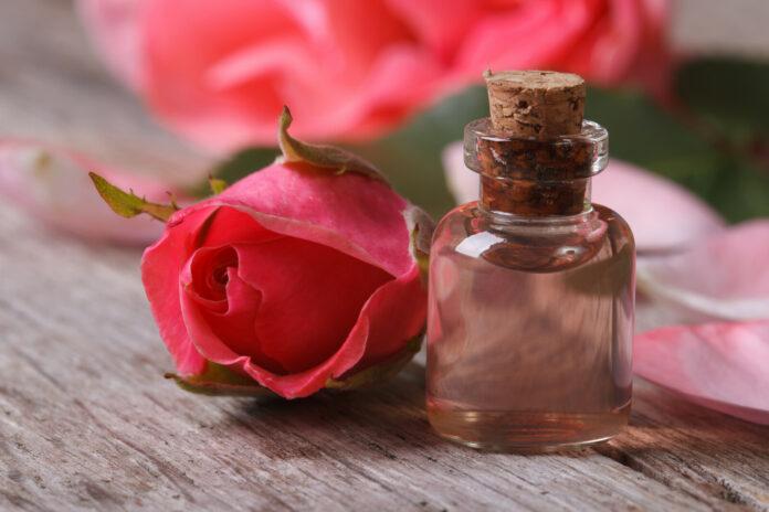 Olio essenziale di Bois De Rose: che cos'è, proprietà, benefici, utilizzi e controindicazioni