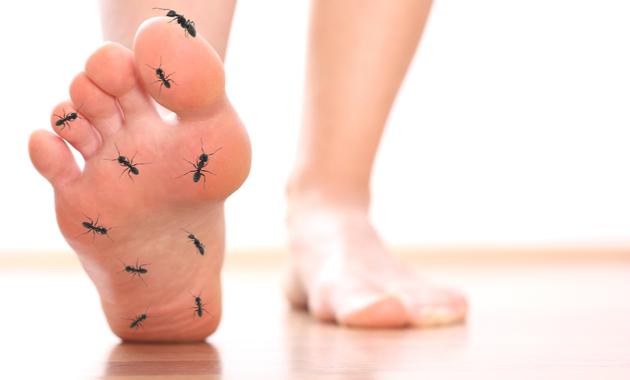 Formicolio ai piedi: che cos'è, cause, sintomi, diagnosi e possibili cure