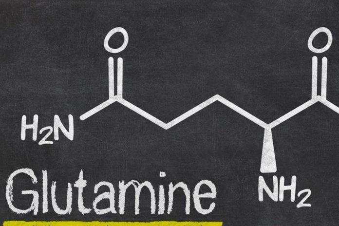 Glutammina: che cos'è, a cosa serve, proprietà, dosaggio e controindicazioni